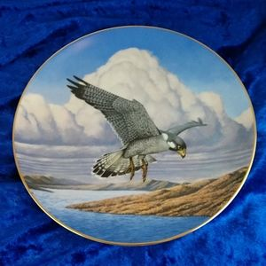 Vintage Hamilton Collection Peregrine Falcon Plate